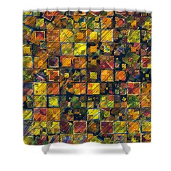 Blocks Shower Curtain by Susan Schroeder
