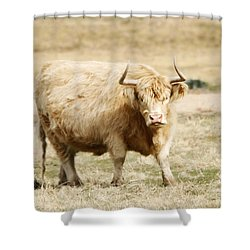 Blondie Shower Curtain