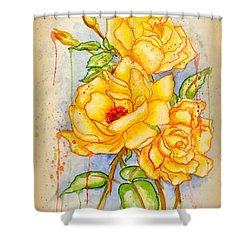 Shower Curtain featuring the painting Blood Sweat And Tears Vignette by Darren Robinson