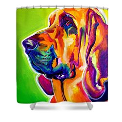Bloodhound - Sunlight Shower Curtain