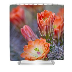 Shower Curtain featuring the photograph Bloom In Orange by Bryan Keil