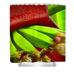 Blooming Bananas Shower Curtain