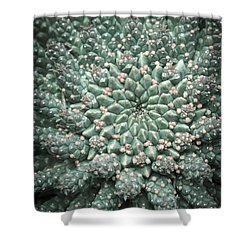 Blooming Geometry Shower Curtain