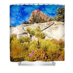 Blooming Nevada Desert Near Ely Shower Curtain