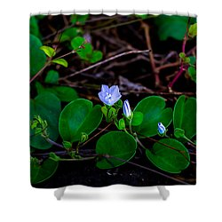 Blooming Vine Shower Curtain