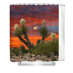 Full Blooming Yucca Shower Curtain