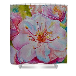 Blossom Shower Curtain by Beverley Harper Tinsley