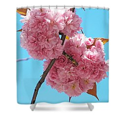 Blossom Bouquet Shower Curtain