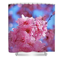 Blossom Flowers Trees Art Prints Shower Curtain by Baslee Troutman