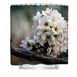 Blossom Gathering Shower Curtain