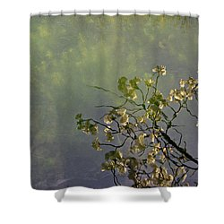Shower Curtain featuring the photograph Blossom Reflection by Marilyn Wilson