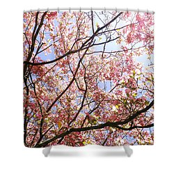 Blossoming Pink Shower Curtain by Robyn King