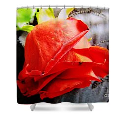 Shower Curtain featuring the photograph Blossoming Red by Robyn King