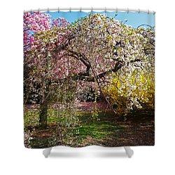 Blossoms Potpourri II Shower Curtain
