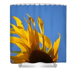 Blow Back Shower Curtain