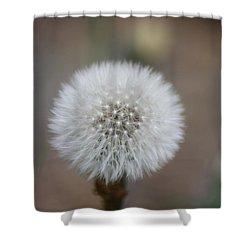Blow Ball  Shower Curtain by Daniel Precht