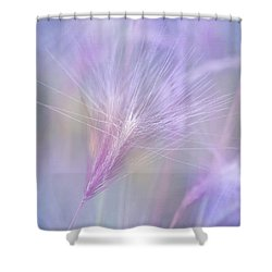 Blowing In The Wind Shower Curtain by Kim Hojnacki
