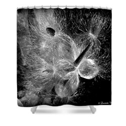 Shower Curtain featuring the photograph Blowing In The Wind by Lucinda Walter