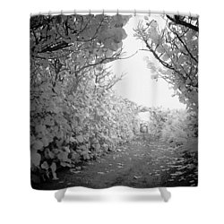 Blowing Rocks Jupiter Florida Shower Curtain