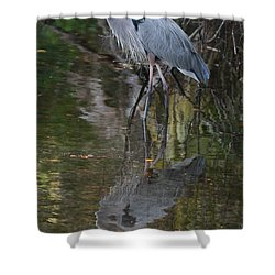Blue 1212 Shower Curtain