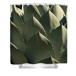 Blue Aloe Shower Curtain by Ellen Henneke