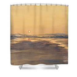 Shower Curtain featuring the painting Blue Anchor Sunset by Martin Howard