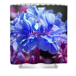 Blue And Purple Flowers Shower Curtain by Matt Harang