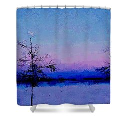 Blue Ballet Shower Curtain