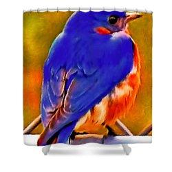 Blue Beauty 2013 Shower Curtain