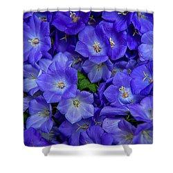 Blue Bells Carpet. Amsterdam Floral Market Shower Curtain