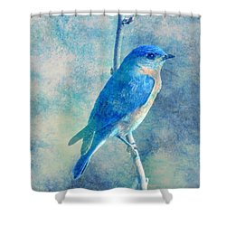 Blue Bird Blue Sky Shower Curtain