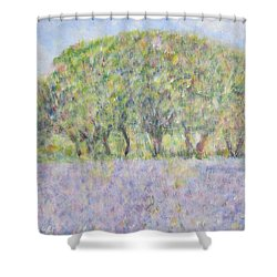 Blue Bonnets  Field In  Texas Shower Curtain