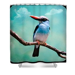 Shower Curtain featuring the photograph Blue Breasted Kingfisher by Gary Heller