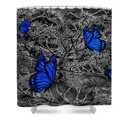 Blue Butterflies 2 Shower Curtain by Barbara St Jean