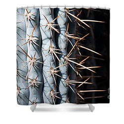 Blue Cactus Shower Curtain
