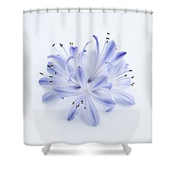 Blue Circle Shower Curtain by Anne Gilbert