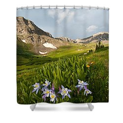 Shower Curtain featuring the photograph Handie's Peak And Blue Columbine On A Summer Morning by Cascade Colors