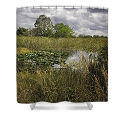 Blue Cypress Wetlands Shower Curtain
