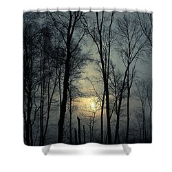 Blue Daybreak Shower Curtain by Karol Livote