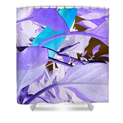 Shower Curtain featuring the photograph Blue Delight by Mike Breau