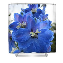 Blue Delphinium Rising Shower Curtain by MTBobbins Photography