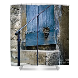 Blue Door With Pet Outlook Shower Curtain by Heiko Koehrer-Wagner