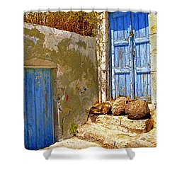 Blue Doors Of Santorini Shower Curtain