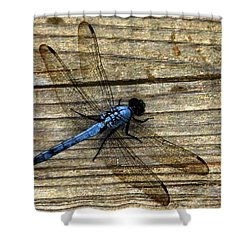 Shower Curtain featuring the photograph Blue Dragonfly by Carlee Ojeda
