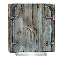 Shower Curtain featuring the painting Blue Entrance Door Has Stories by Kelly Mills