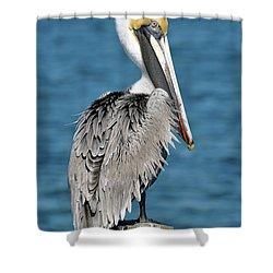 Blue Eyed Blondie Shower Curtain