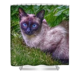 Shower Curtain featuring the photograph Blue Eyes - Signed by Hanny Heim