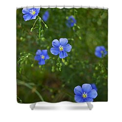 Blue Flax Shower Curtain