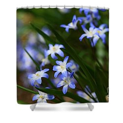 Blue For You Shower Curtain by Neal Eslinger