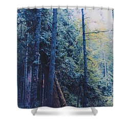 Blue Forest By Jrr Shower Curtain by First Star Art
